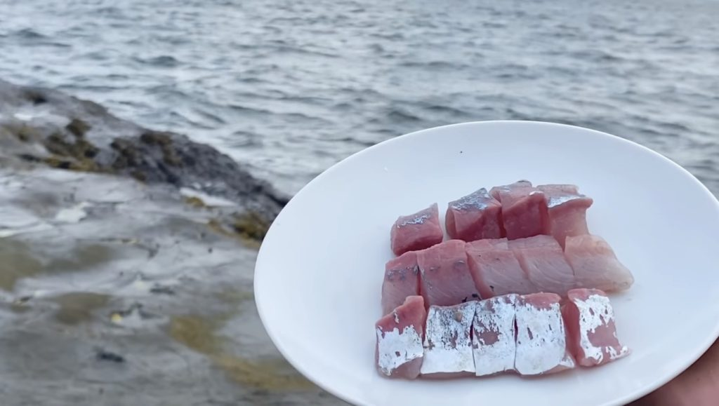 江ノ島で釣れた魚を捌いてその場で食べてみたよ♪